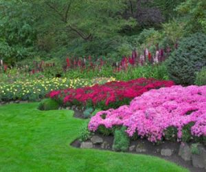 landscape_and_flowers_omaha_landscaping
