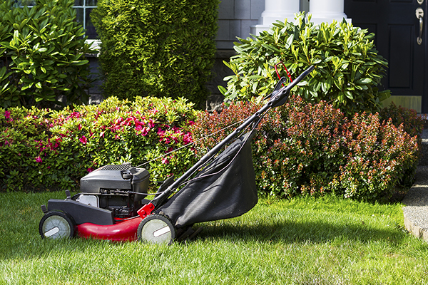 "Omaha Lawn Care: When the Cost of ""Do It Yourself"" Just Doesn't Add Up"