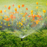 It's Time to Turn on Your Sprinkler System: Helpful Hints for Seasonal Start-Up