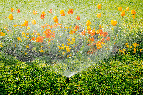 Sprinkler system helpful hints for seasonal start up (Omaha Home Owners)
