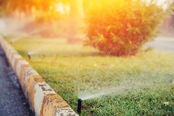 Replacing Lawn Sprinkler Heads: Tips and Tricks