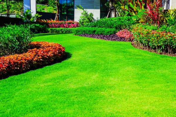 landscapes lawns and beyond