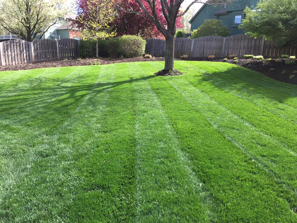 Omaha-Lawn-Care-Above-and-Beyond-CGM